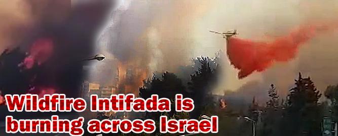 firehaifa
