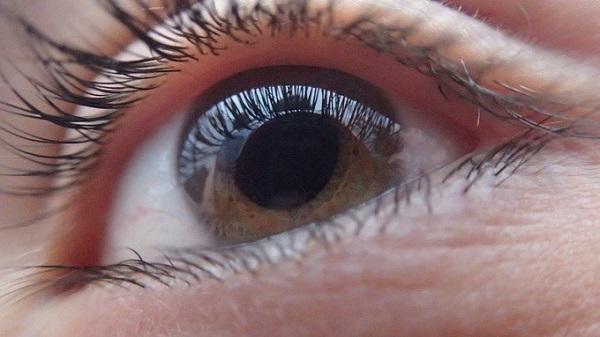 Bientôt des gouttes pour retrouver la vue — Myopie