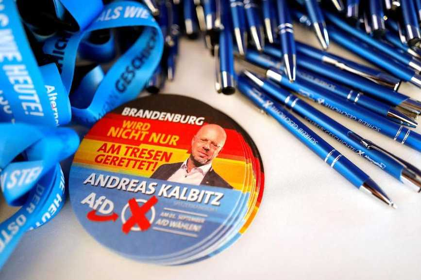 Forte poussée de l'extrême droite — Allemagne