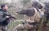 L'armée libanaise défouraille contre Tsahal sur la ligne bleue